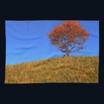 Clear Autumn Day Kitchen Towel
