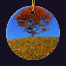 Clear Autumn Day Ornament