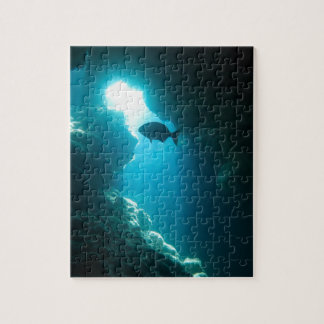 Clear blue cave and fish jigsaw puzzle