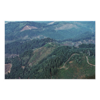Clear Cuts, Old Growth (Aerial) Print