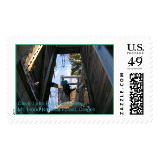Clear Lake Butte Fire Lookout Postage