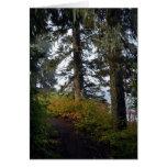 Clear Lake Hiking Trail Greeting Card