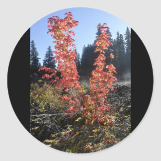 Clear Lake Lava Flow Classic Round Sticker
