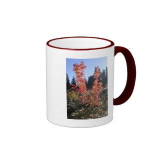 Clear Lake Lava Flow Coffee Mugs