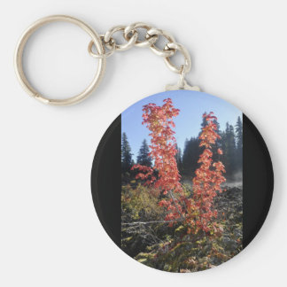Clear Lake Lava Flow Keychain