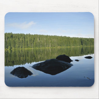 Clear Lake Reflections Mouse Pads