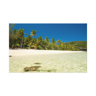 tropical canvas art prints zazzle