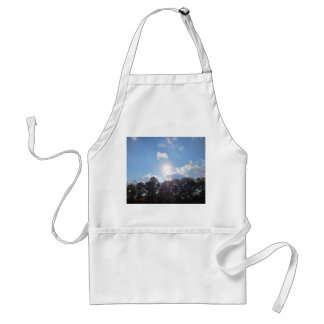 Clear Skies Adult Apron