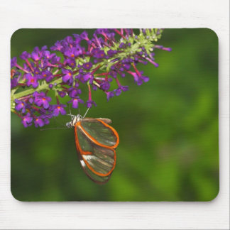 Clear wing upside down mouse pad