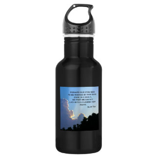 Clearer View Stainless Steel Water Bottle