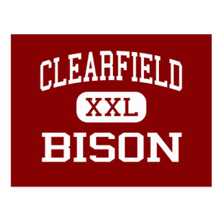 Clearfield - Bison - Area - Clearfield Postcard