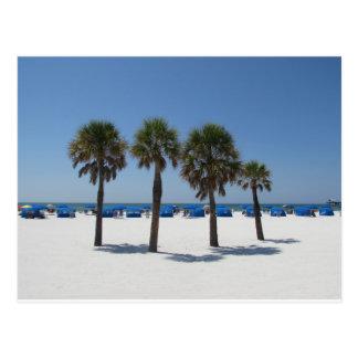 Clearwater Beach FL Postcard