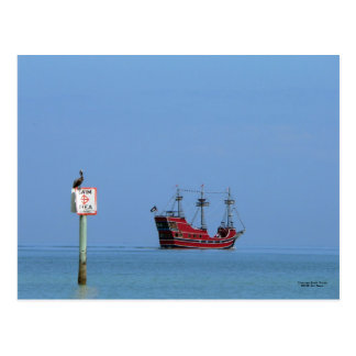 Clearwater Beach Pirate Cruise Postcard