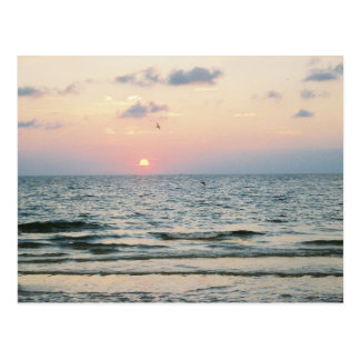 Clearwater Beach sunset postcard