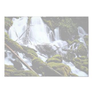 Clearwater Falls, Umpqua National Forest, Oregon, 5x7 Paper Invitation Card