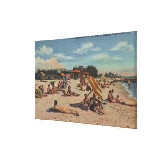Clearwater, FL - Sunbathers en la playa de Clearwa Impresiones En Lienzo Estiradas