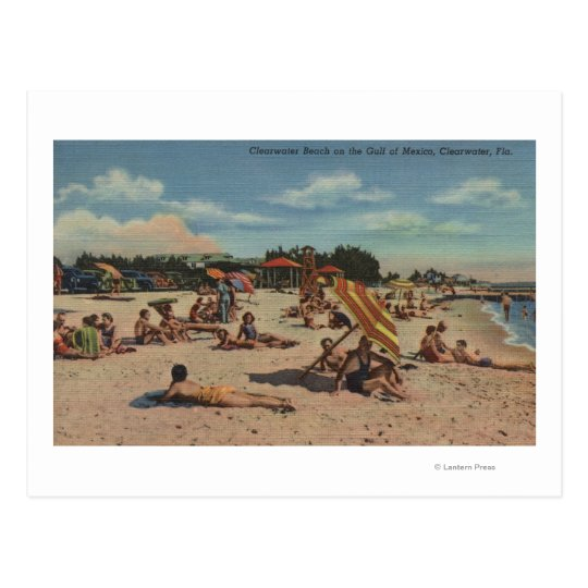 Clearwater, FL - Sunbathers on Clearwater Beach Postcard