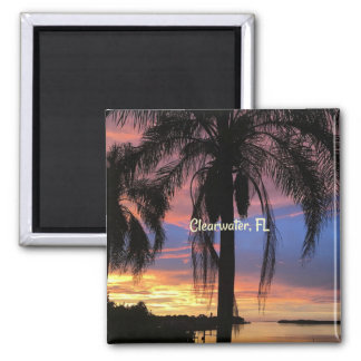 Clearwater, Florida landscape photo Magnet