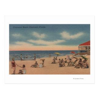 Clearwater la Florida - vista de la playa de Clea Tarjetas Postales