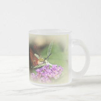 Clearwing Hawk Moth - Hemaris thysbe Frosted Glass Coffee Mug