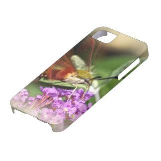 Clearwing Hawk Moth - Hemaris thysbe iPhone SE/5/5s Case