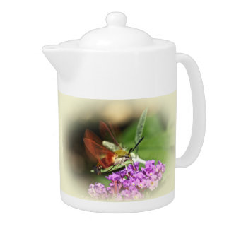 Clearwing Hawk Moth - Hemaris thysbe Teapot
