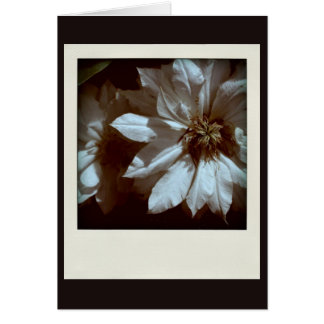 Clematis 1 - Sympathy Thank You - Condolence Greeting Card