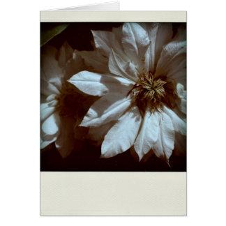 Clematis 2 Sympathy Thank You - Condolences Greeting Card