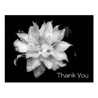 Clematis 3b Memorial Sympathy Thank You Postcard