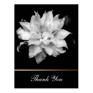 Clematis 3c Floral B&W Photo Sympathy Thank You Postcard