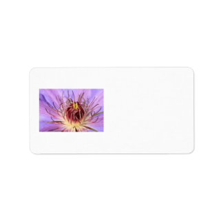 Clematis Address Labels