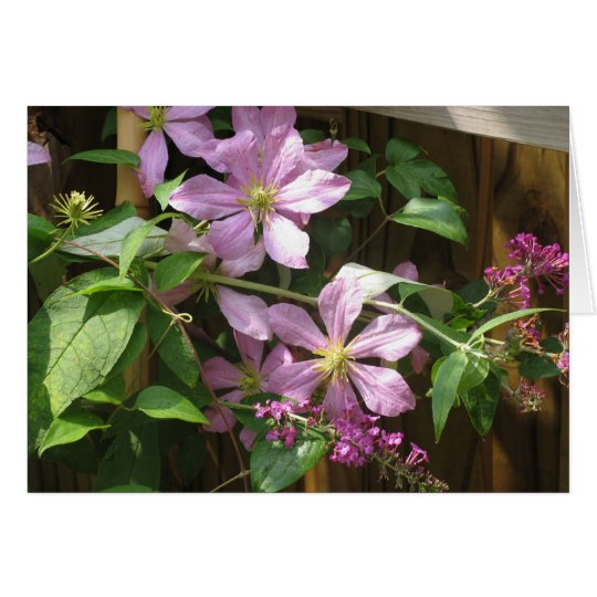 Clematis and Buddleia Card