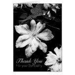 Clematis blanco -1 - la condolencia le agradece tarjeta pequeña