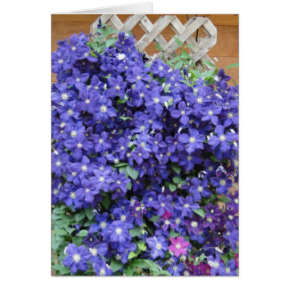 Clematis, Blessed Day Card