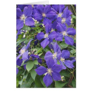 CLEMATIS, BLUE STATIONERY NOTE CARD