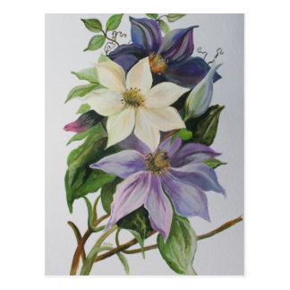 Clematis de la lila tarjetas postales