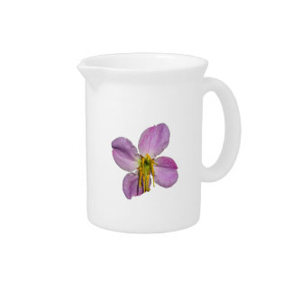 Clematis Drink Pitchers
