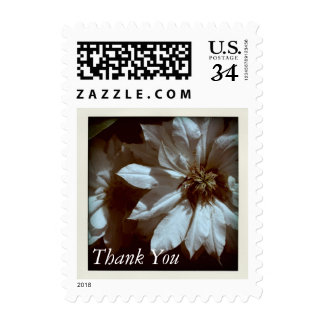 Clematis Floral Photography  Thank You Postage