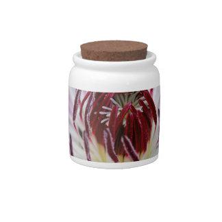 Clematis Flowers Flower Plant Garden Candy Jar