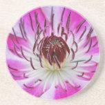 Clematis Flowers Flower Plant Garden Coaster