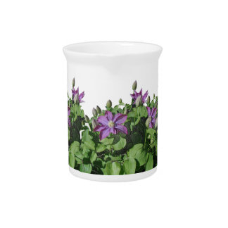 Clematis Flowers Pitcher