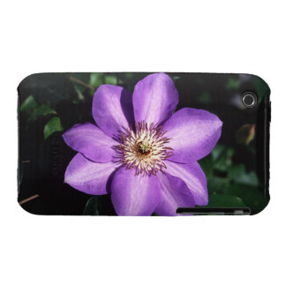 Clematis Hybrid iPhone 3 Covers
