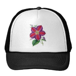 Clematis Magnifica Trucker Hat