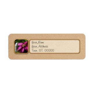 Clematis - Majesty Custom Return Address Labels