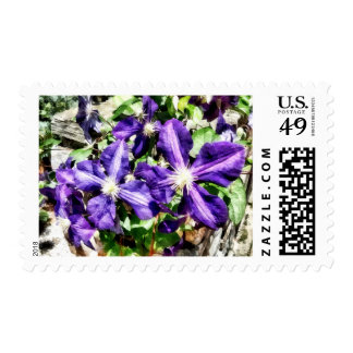 Clematis on a Stone Wall Postage
