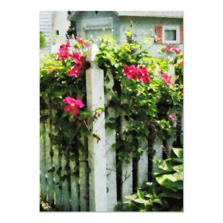 Clematis on Fence Card