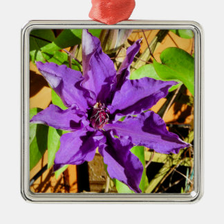 CLEMATIS CHRISTMAS TREE ORNAMENTS