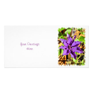 CLEMATIS PHOTO CARD