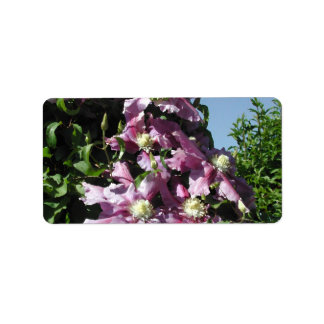 Clematis Pink Flowers and blue sky Address Label
