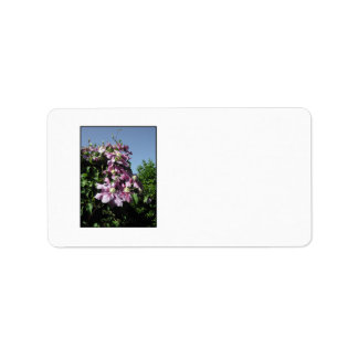 Clematis Pink Flowers and blue sky Personalized Address Labels